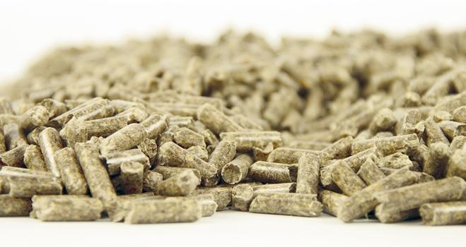 Un combustible eficiente y ecológico: el pellet